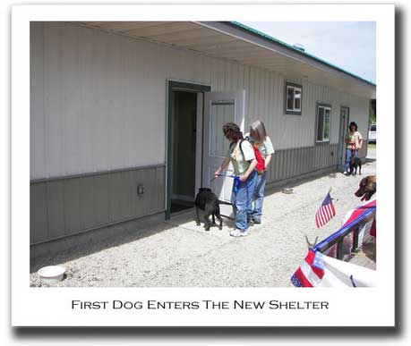 the first dog enters the shelter